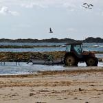 Traktor im Meer